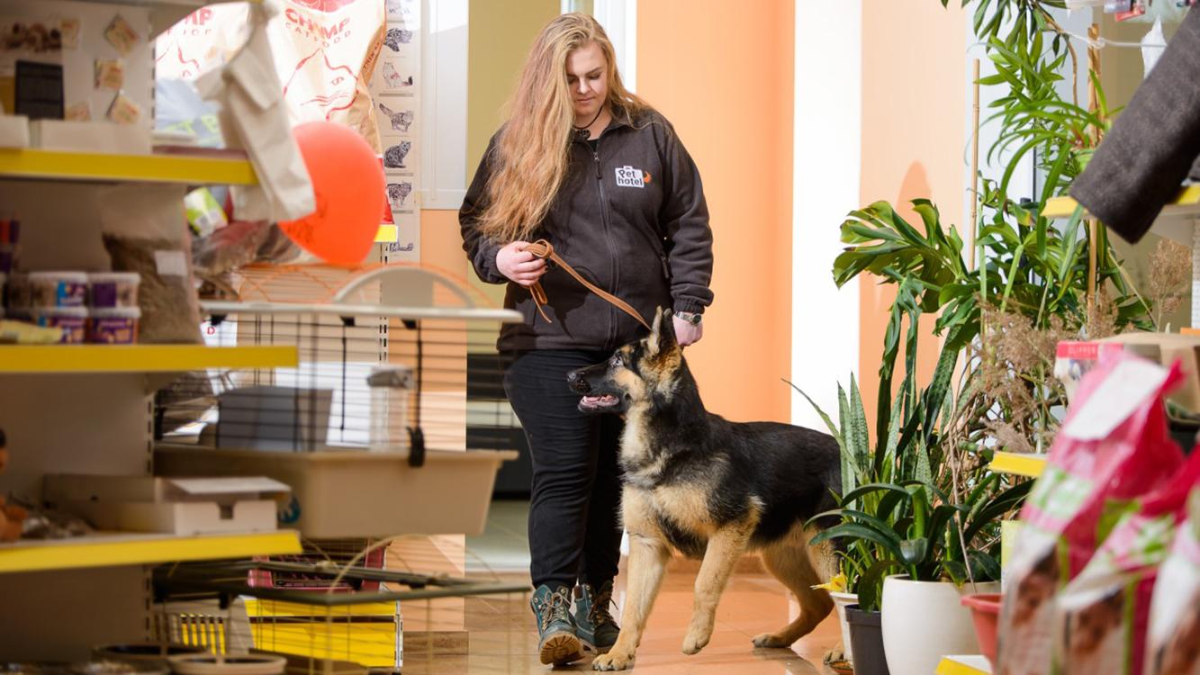 Gyvūnų šunų kačių viešbutis darželis Pethotel